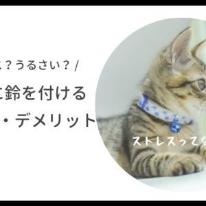 猫の首輪に鈴を付けるデメリットは?それでも鈴を付けたい理由。
