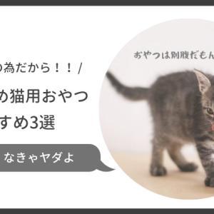 猫に塩分の少ないおやつを与えたい!無添加や減塩のおすすめ猫用おやつ3選