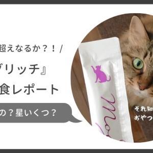 ペースト状の猫用おやつモグリッチを購入!塩分控えめだけど猫の評判や安全性は?