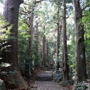 熊野古道中辺路その1(那智駅→大門坂→熊野那智大社→那智高原→地蔵茶屋)