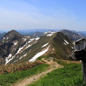 【2020年6月】谷川連峰登山についての情報と記録