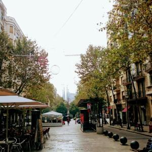 ・スペイン・実際のサグラダ ファミリアは本当にゴージャス!バルセロナ②