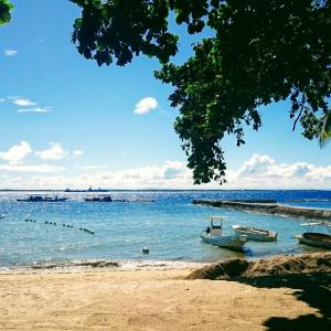 ・フィリピン・マクタン島に近い美しいビーチの島へ行くには?セブ④
