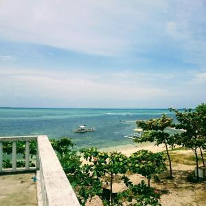・フィリピン・セブで交渉して船を借りて島に行ってみたら?セブ⑧