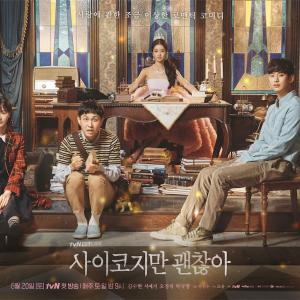 韓国ドラマ 「サイコだけど大丈夫」 感想 と Netflixで人気の理由