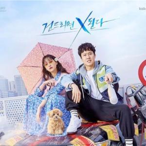 韓国ドラマ 「このエリアのクレイジーX」 感想  多様な人間もよう