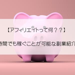 【アフィリエイトって何??】月収100万も夢じゃない!!勝ち組決定のオススメ副業紹介♪