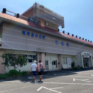 高知県土佐清水市 足摺海底館で流される魚を見た!(^^)