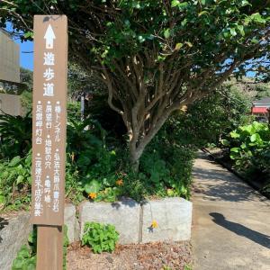 高知県 足摺岬はいろんな場所から楽しめます!