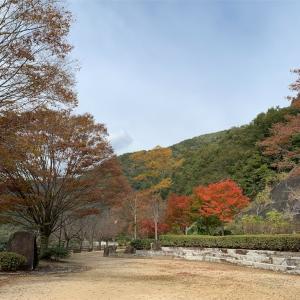 岡山市北区 黒谷ダムの紅葉