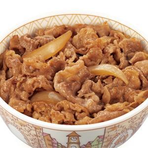 すき家 期間限定 牛丼(並盛)ランチセット税込500円