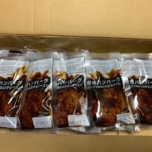 ふるさと納税 福岡県飯塚市 鉄板焼 ハンバーグデミソース 20個