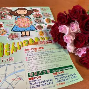 岡山市南区 依田バラ園に行ってみました♪