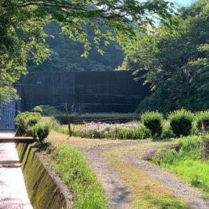 久米南町 花菖蒲園と 道の駅 くめなん