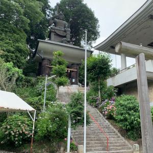 倉敷市 安養寺の紫陽花♪
