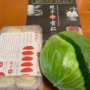 総社市 餃子雪松 食べてみた!