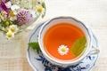 自家製紅茶を作ってみよう!