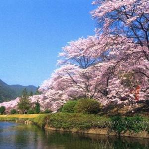 奈良の公園を散歩してみませんか?