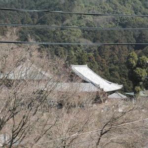 奈良の山寺~壷阪寺~