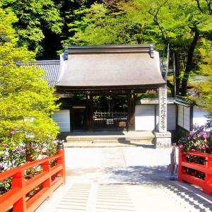 奈良の里山散歩2