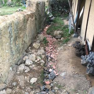 暗渠排水のその後。