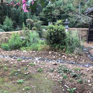 土塀破壊からの庭づくり