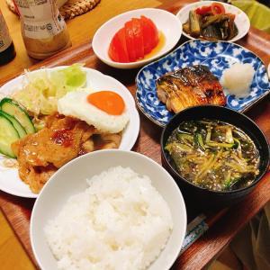 生姜焼き&鯖味醂干し