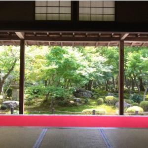 【 お客様の着姿 】夏着物を楽しむ京都旅