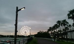 日々葛西臨海公園を走る