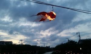 今年のお盆休みは「空飛ぶ金魚」を鑑賞