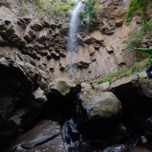 ファッショナブルな滝の道エリア、Queen Mary Falls!