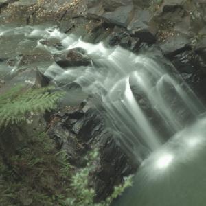 僕のフェイバリットな滝、Dalwood Fallsが好きな理由。