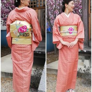いつものお堂の横は八重桜満開。3月分の『薔薇と水玉』コーデの着姿。