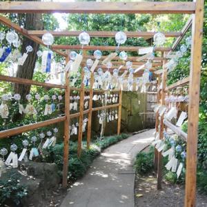金魚コーデで『夏越風鈴』のある岩槻・久伊豆神社へ。