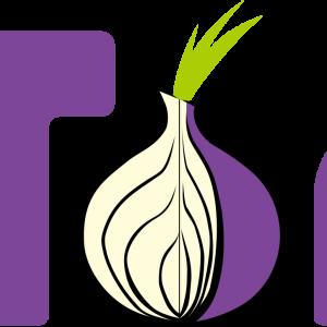 ubuntu19.04に匿名化ブラウザ:TorBrowserをインストールする