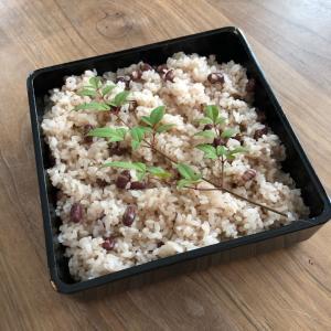 【お米は痩せる】糖質オフに失敗してたどり着いたダイエット法