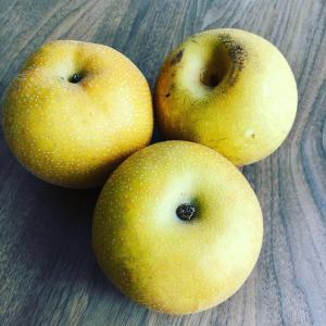 秋といえば梨♡妊活&ダイエット中に効く嬉しい効果!