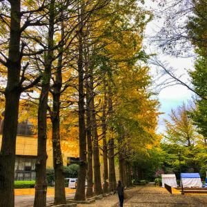 武蔵野日記ー深まる秋
