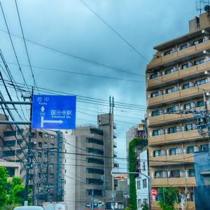 レヴォーグ日記 - 野川公園ドライブ (#1)