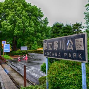 レヴォーグ日記 - 野川公園ドライブ (#2)
