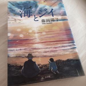 海とジイ  藤岡陽子