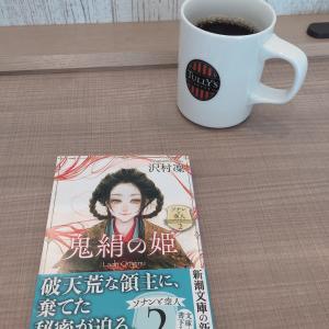 『鬼絹の姫 ソナンと空人』 沢村凛