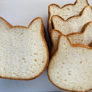 ねこねこ食パンを購入・食べてみた