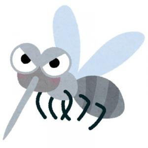【夏と蚊】刺されてかゆくなる人、ならない人。その違いはなにか、調査してみます。