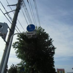 交通当番。。。(*^。^*)
