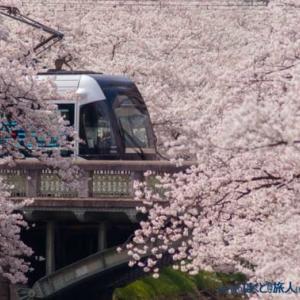 春を纏う(富山にて)
