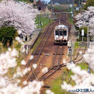 湯乃鷺駅の春(西岸にて)