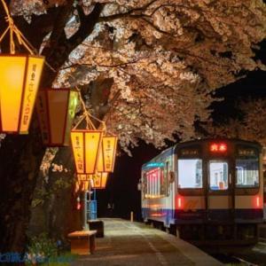 夜桜の駅(能登鹿島にて)