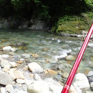 高見川解禁 気温水温低くて、釣果も寒むかった!