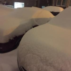 大雪のバンクーバー